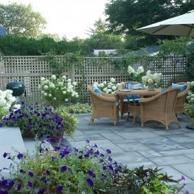 Решетчатый забор за цветущими кустами гортензии