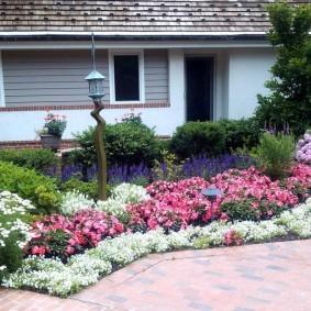 Розовые и белые цветы на клумбе у дома