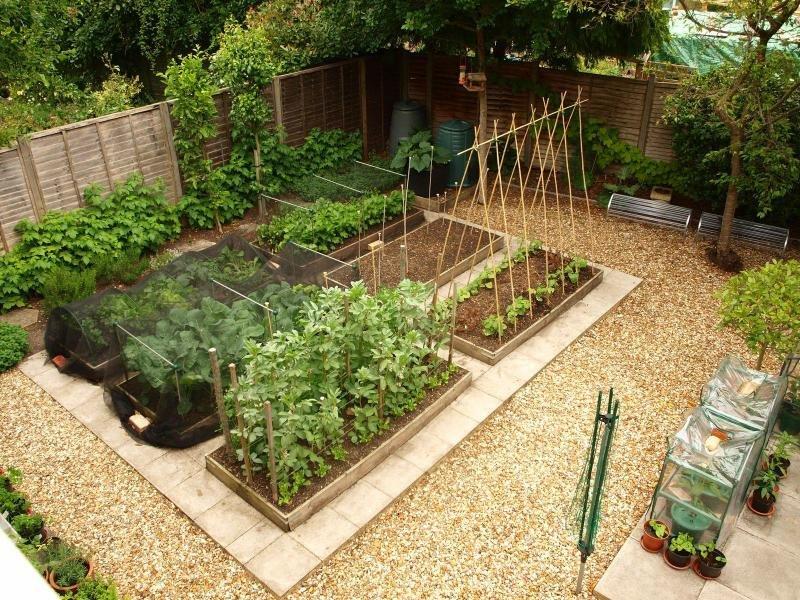 Компактный огород с красивыми грядками