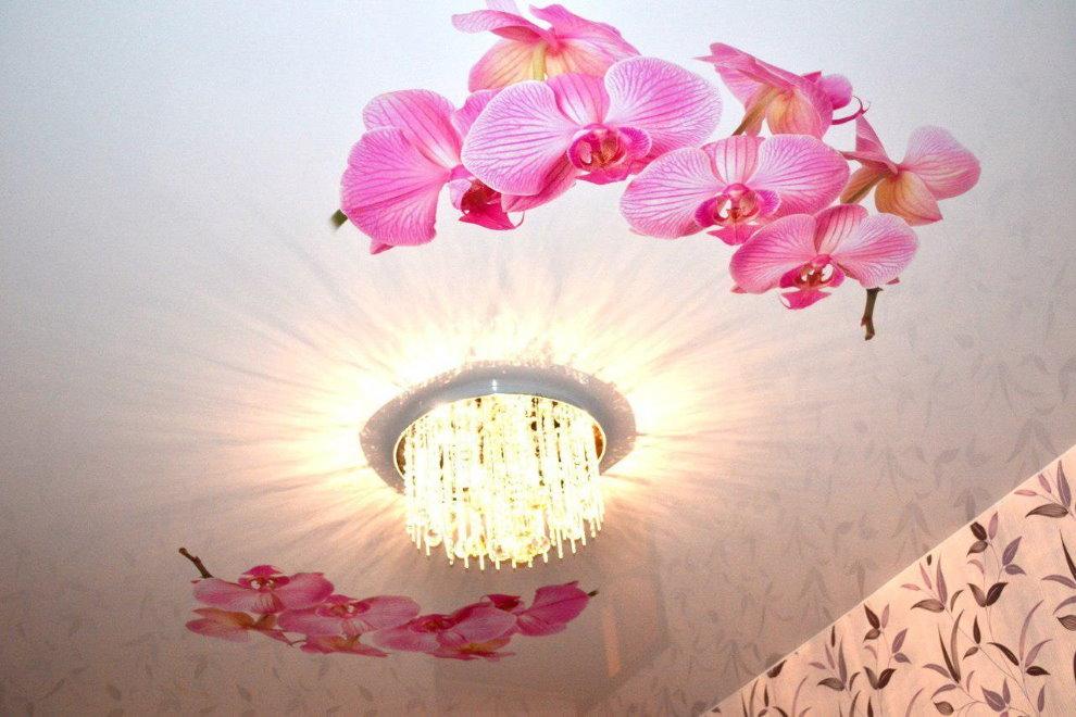 Люстра для натяжного потолка с фотопечатью цветов