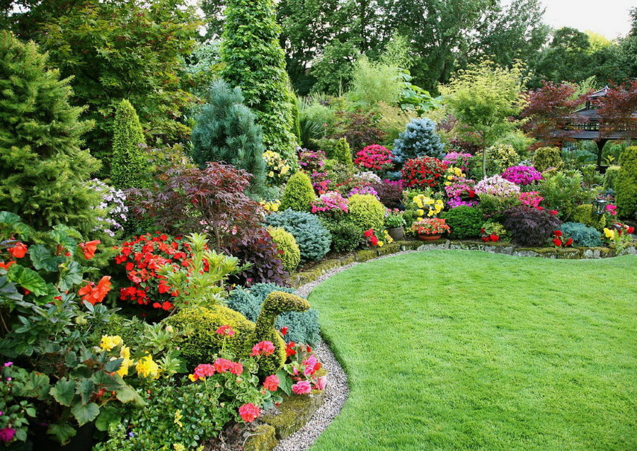 Цветущий уголок садового участка в середине лета
