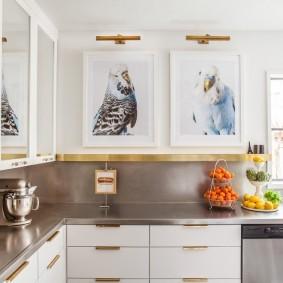 Фото с попугаями на стене кухни