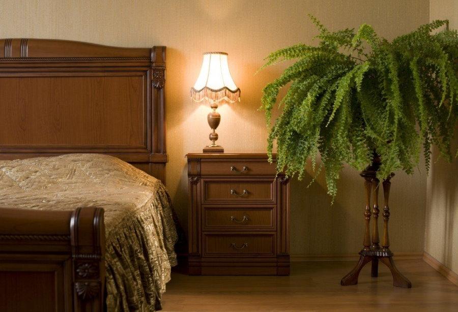 Домашний папоротник в спальне двухкомнатной квартиры
