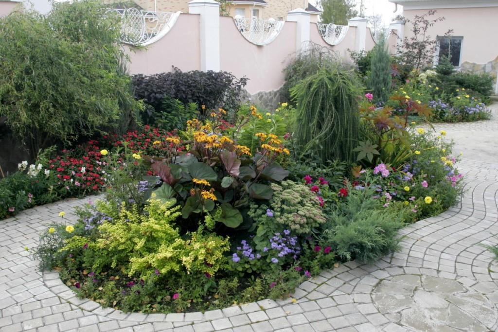 Многолетние растения на клумбе участка площадью 20 соток