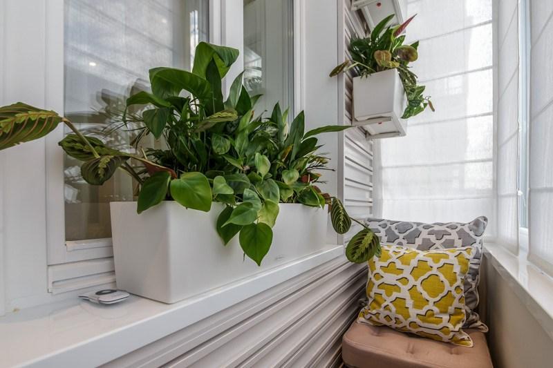 Белый контейнер с зелеными растениями на балконе панельного дома