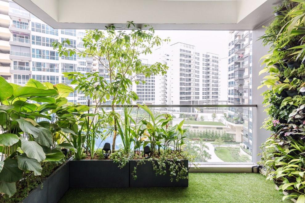 Зеленые растения на лоджии многоэтажного дома