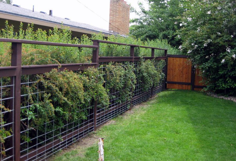 Садовая ограда из сетки на каркасе из профиля