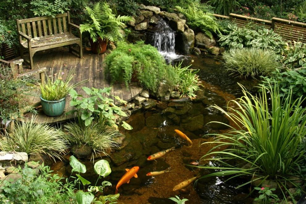Деревянная лавочка на площадке возле пруда с рыбками