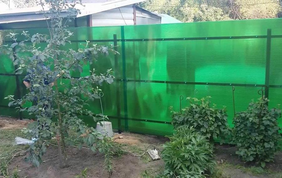Зеленый забор из сотового поликарбоната