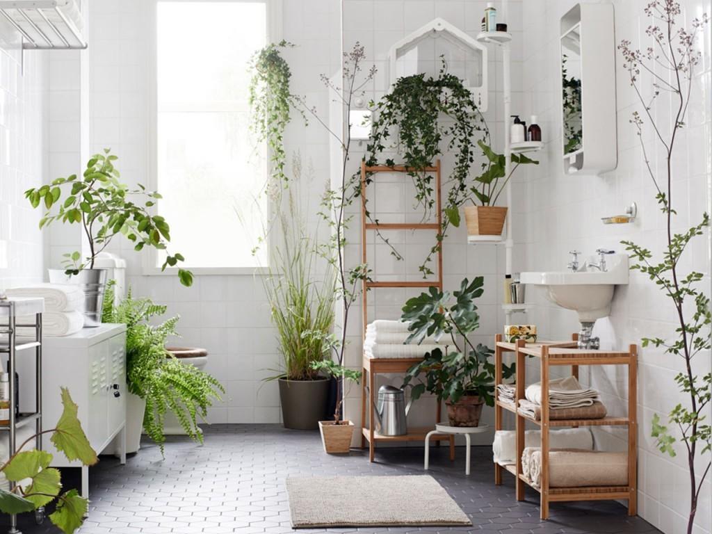 Зеленые растения в белой комнате