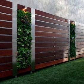 Вертикальное озеленение садовой ограды