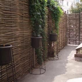 деревянный забор для участка фото оформление