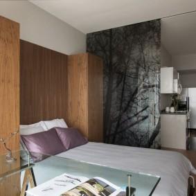 двухкомнатная квартира хрущёвка виды дизайна