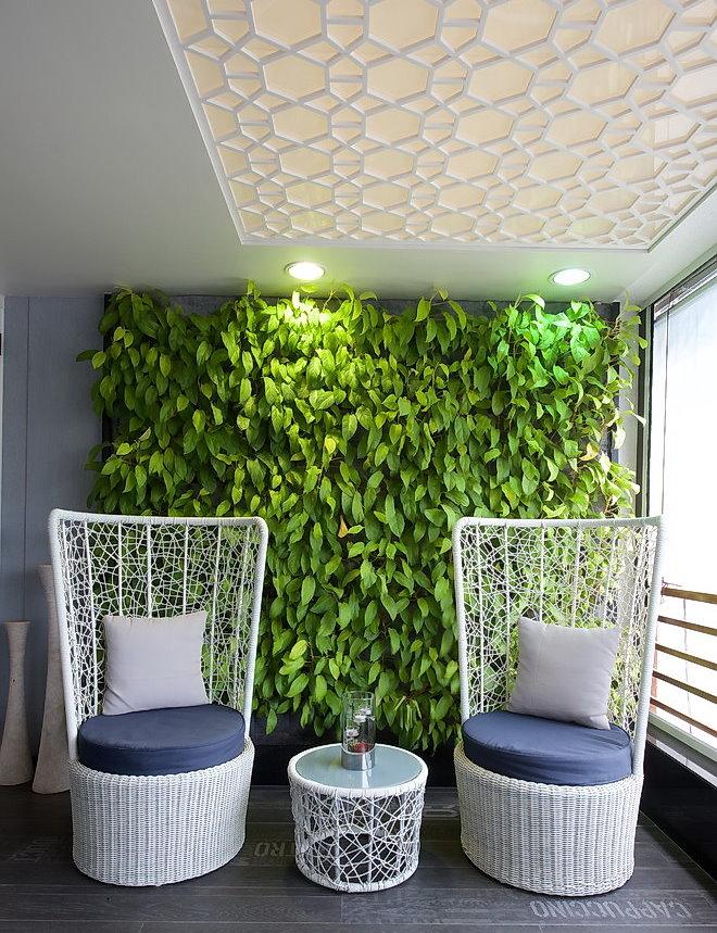 Фитостена из тенелюбивых растений в интерьере квартиры