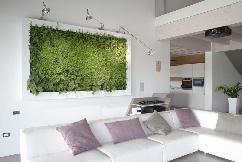Фитокартина в гостиной с белыми стенами