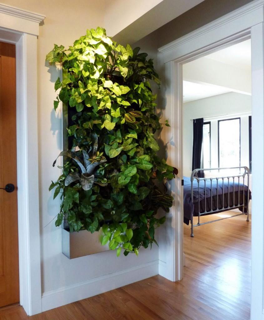 Подсветка вьющихся растений в прихожей квартиры