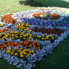 Красивый цветник из однолетних растений
