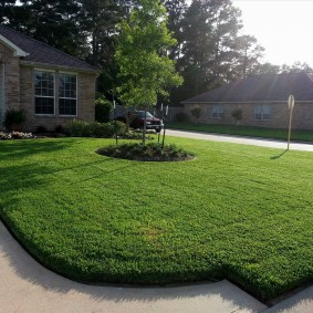Классический газон перед частным домом