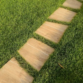 Пошаговая тропинка через садовый газон