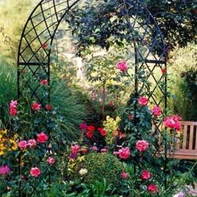 Садовая арка с цветущими розами