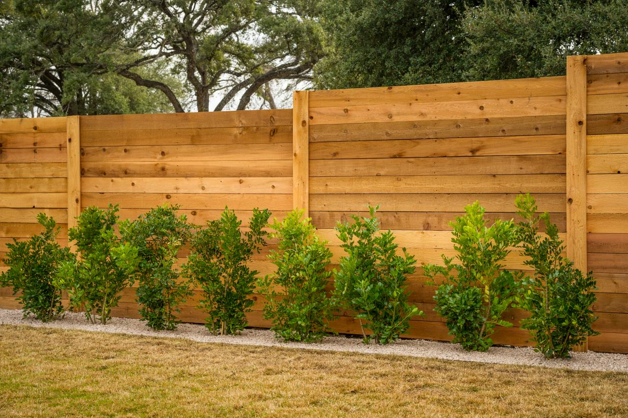 забор деревянный фотогалерея фото голубики издавна
