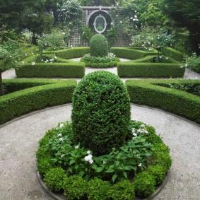 Стриженные кустарники в саду английского стиля