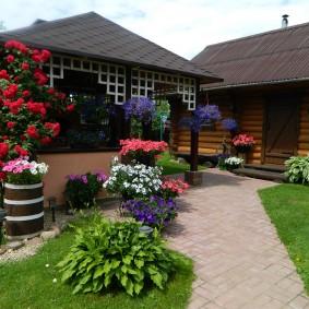 Плетистые розы на садовой беседке