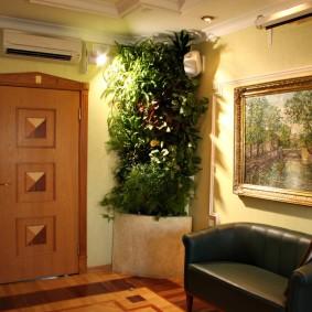 Дизайн просторной прихожей с живыми растениями