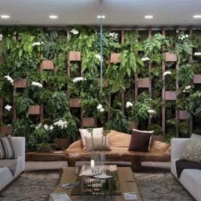 Стеллаж с живыми растениями в гостиной комнате
