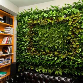 Вертикальный сад в домашнем кабинете