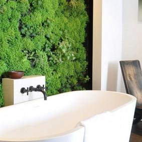 Белая ванна под стеной из стабилизированного мха