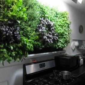 панно из трав и цветов на стене кухни