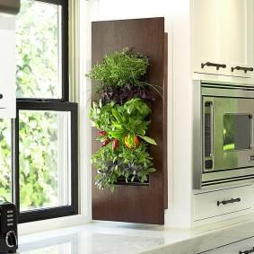 Щит с живыми растениями на откосе кухонного окна