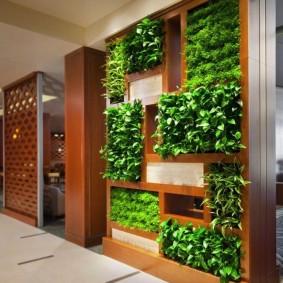 Деревянный стеллаж для вертикального озеленения