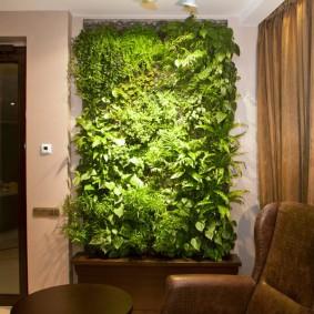 Вертикальный сад в гостиной комнате