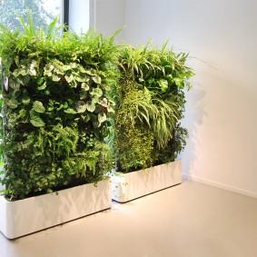 Передвижные стойки для вертикального озеленения
