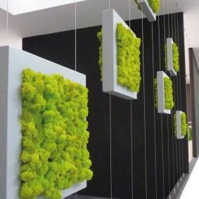 Вертикальный сад из подвесных модулей