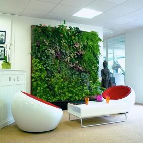 Стильное оформление стены живыми растениями