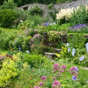 Ландшафт сада в природном стиле