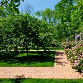 Прямоугольные дорожки в саду современного стиля