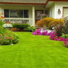Партерный газон с зеленой травой