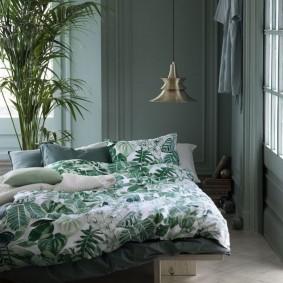 Живое растение в спальне квартиры