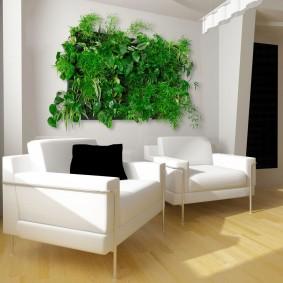 Зеленая картина из живых растений