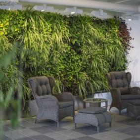 Тенелюбивые растения в зоне отдыха гостиной