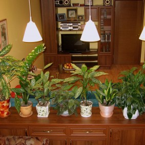 Подвесные светильники на цветами в горшках