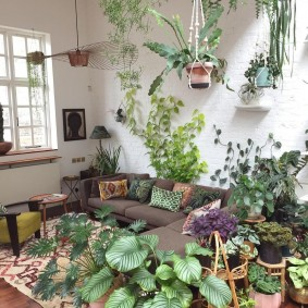 Зимний сад в интерьере гостиной