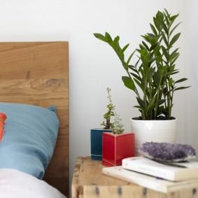 прикроватная тумбочка с зелеными растениями