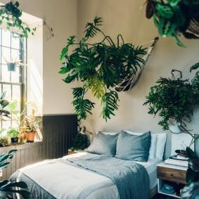 Декор спальной комнаты живыми растениями