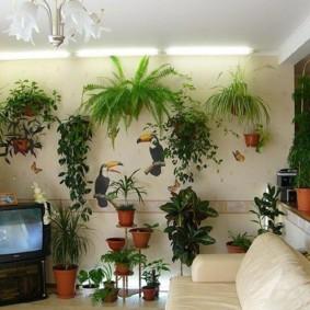Подвесные кашпо с живыми растениями