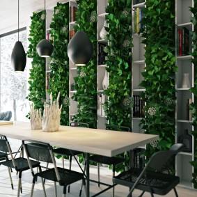 Вьющиеся растения на полках стеллажа